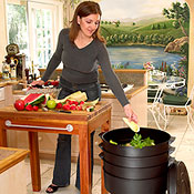 worm composters are odorless and effective indoor composters.