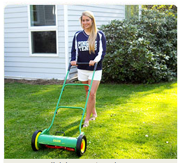 Easun Ideal reel lawn mower